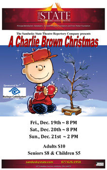 Charlie Brown Christmas Small Banner