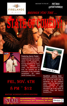 ST161104E State of Comedy Small Banner