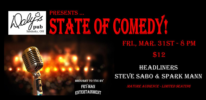 ST170331E State of Comedy Large Banner
