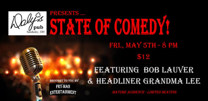 ST170505E State of Comedy Large Banner